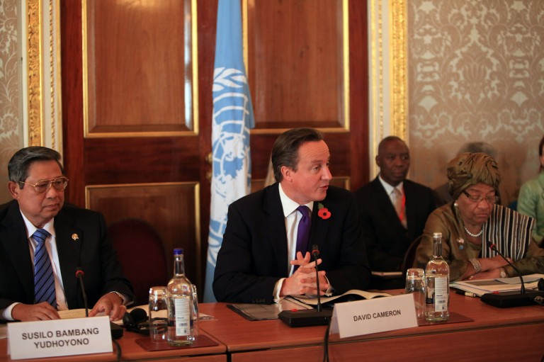 UK Prime Minister David Cameron speaks at the UN High Level Panel, November 1, 2012.