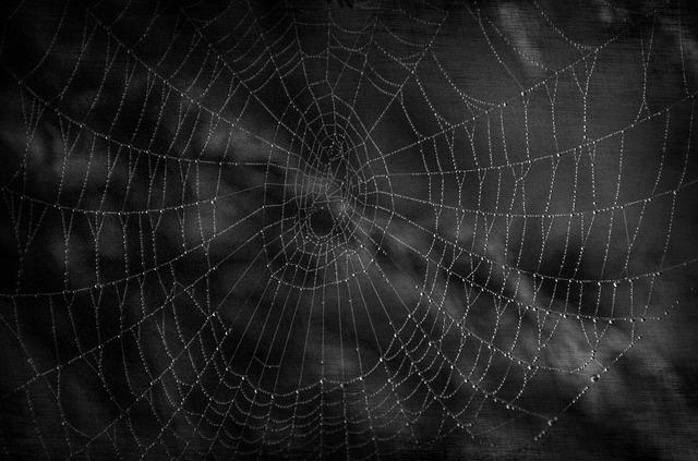 dark-216714_640