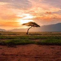 London Event March 19 - Africa In The 21st Century: Change, Challenges and Hope